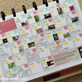 30 Days Wild Calendar