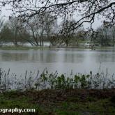 riveravonlacockfloods2012-15