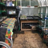 Glasshouse after tidying