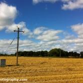 06-strawfield