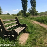Park bench at Chew Valley Lake