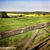 05-gatefield