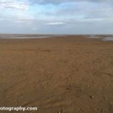 Saltfleetby-Theddlethorpe Dunes