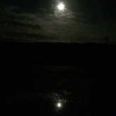 Reflection of the moon in a puddle