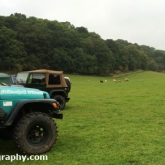 Off-Roading Campsite being invaded by Sheep!
