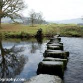 riverrothaysteppingstones2011-06