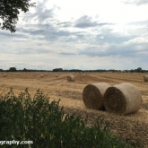 My Patch - Bales of straw