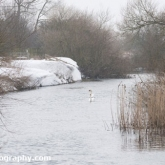 My Patch - Snowdrifts on the river