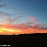 My Patch - Sunset