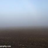 My Patch - Misty Morning
