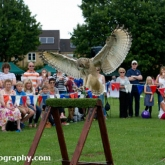 Corsham Armed Forces Day 2014 - Mere Down Falconry